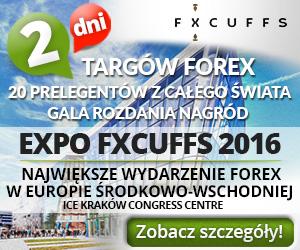 Brokerzy forex biz forum